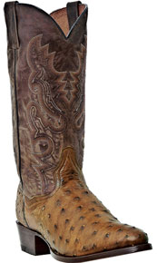 Dan Post Tempe Full Quill Ostrich - Saddle Brown & Chocolate - Men's Western Boots | Spur Western Wear