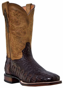 Dan Post Denver Caiman Western Boots - Chocolate - Men's Western Boots | Spur Western Wear